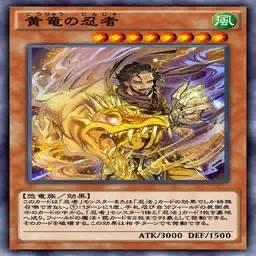 黄竜の忍者
