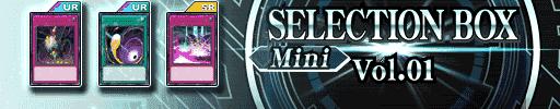 SELECTION BOX Mini Vol.01